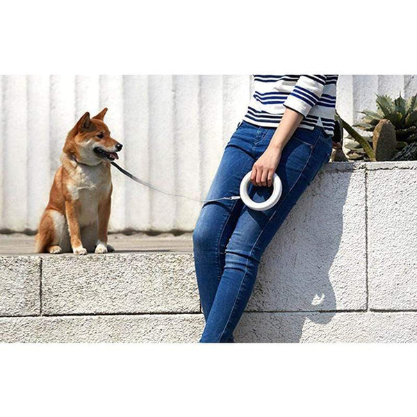 Xiaomi Moestar Flexible Led Lighting Retractable Dog Collar PET PRODUCTS DOG PRODUCTS