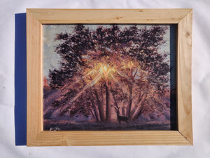 Framed Wooden Print - 8 x 10