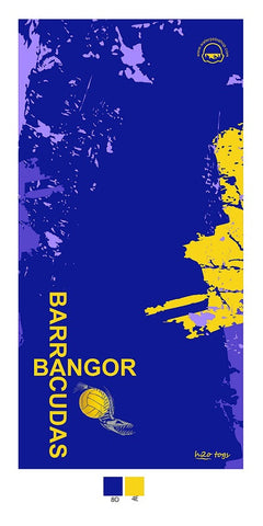 Waterpoloshop - H2OTOGS Customised - Bangor Barracudas Beach Towel