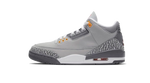 Air Jordan 3 Cool Grey sneaker match tees and jordan 3s Accessories Category icon