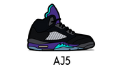 Air Jordan 5 Sneaker Matching Outfit and AJ5 Sneaker Match Accessories Category