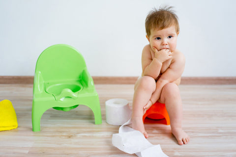 Tips to Prep Your Child Before You Even Begin Potty Training