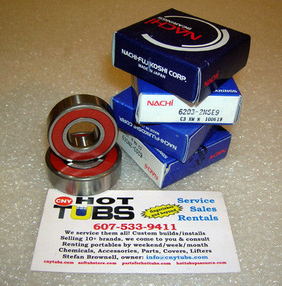 Spa Motor Bearings