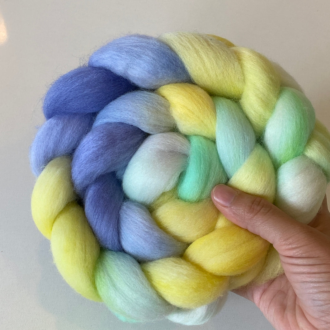 Electric Sunshine on Polwarth