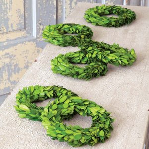 "6"" Preserved Boxwood Wreaths, Set of 6"