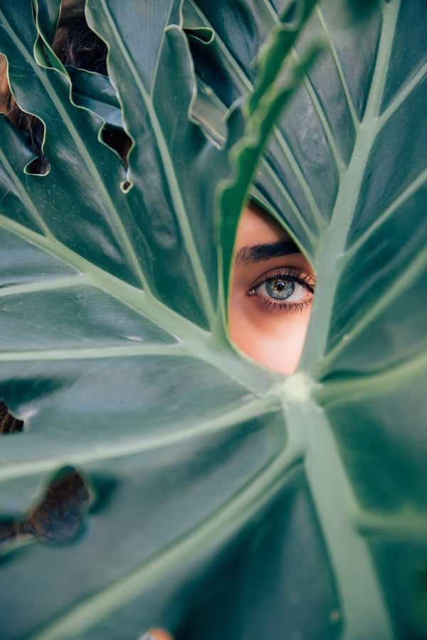 A woman gazing through a palm frond.