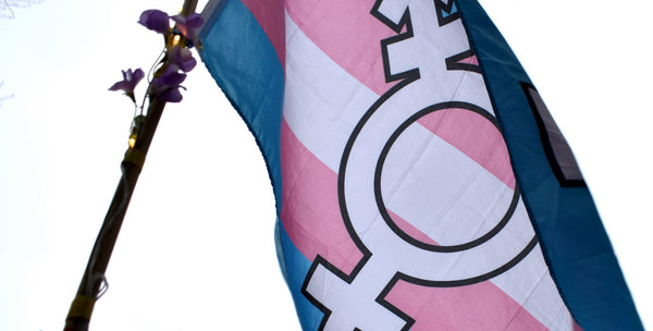 "A text banner that reads ""Protect Trans Lives"""