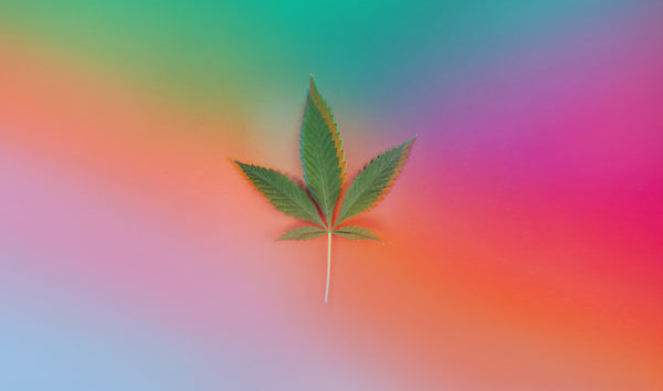 Image of a cannabis leaf on a psychedelic, colorful background.