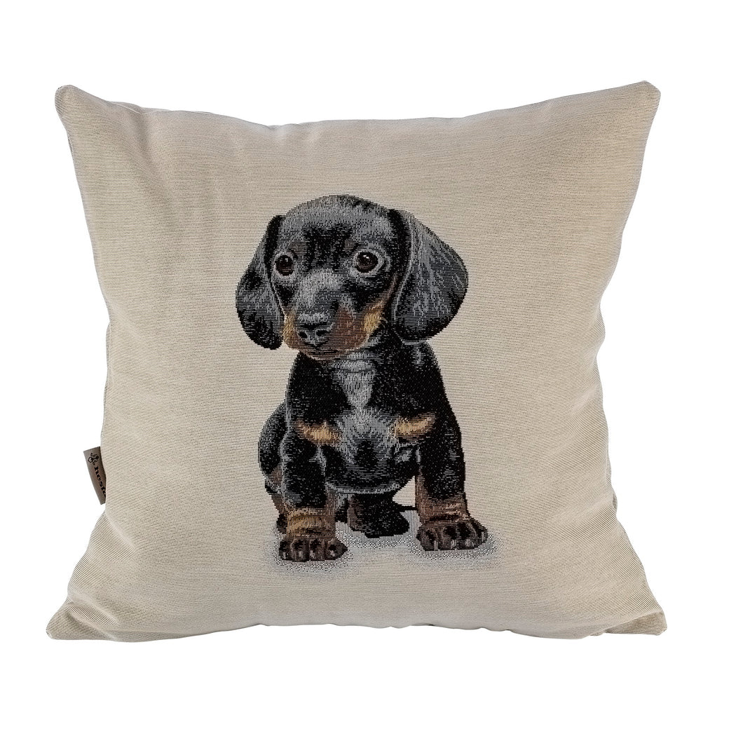 Copricuscino BLACKY, Animal Collection, Gobelin-Jacquard, new 2020