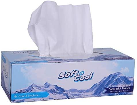 SOFT  N COOL TISSUE BOX 100 X 2PLY