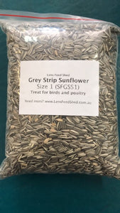 Greystripe Sunflower Size 1
