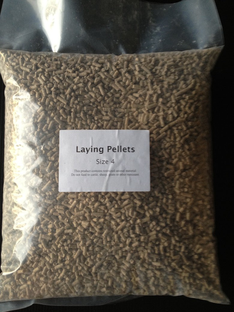 Laying Pellets Size 4