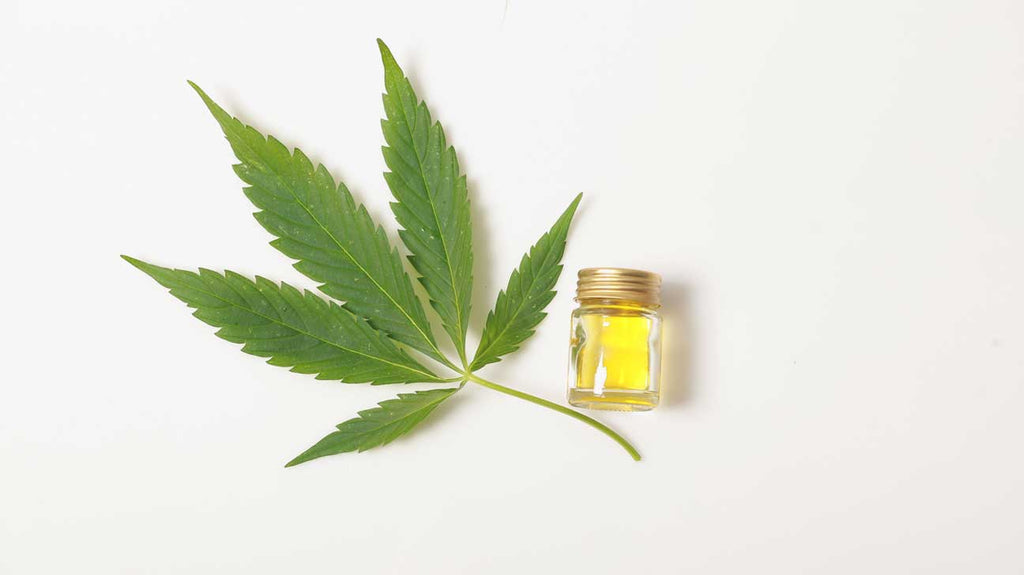 What is Cannabis Sativa Oil?