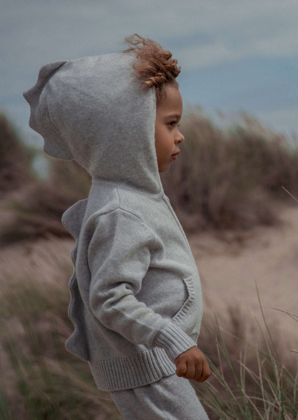 Boys Cashmere Hoodie