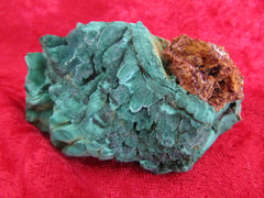 Bisbee Malachite with Matrix - Bisbeeborn