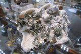 Pyrite on Quartz - Bisbeeborn - 5