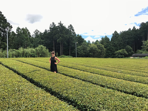Lauren from Mizuba Matcha in the green tea fields in Uji, Japan