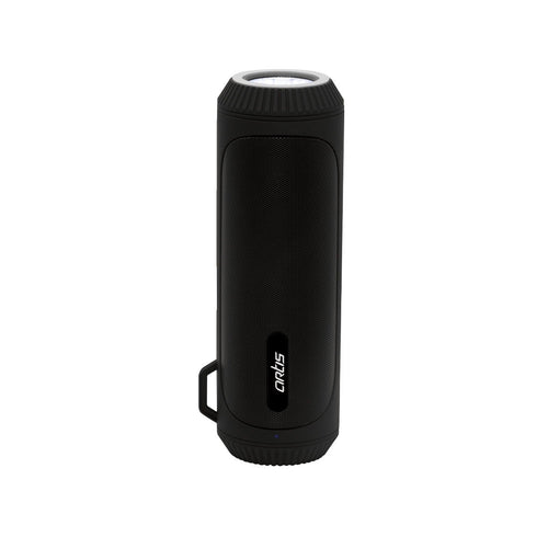 BT22 Portable Wireless BT Speaker with LED Flashlight /FM / USB/Card Reader/AUX In & Hands Free Calling