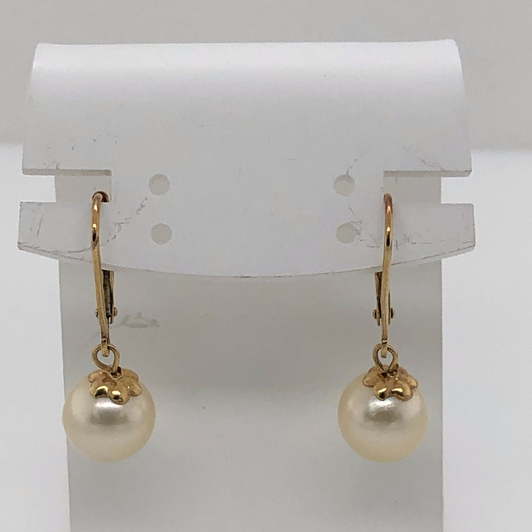 14 Karat Yellow Gold Earrings with Pearls