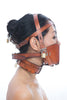 Fancy Leather Muzzle Head Harness