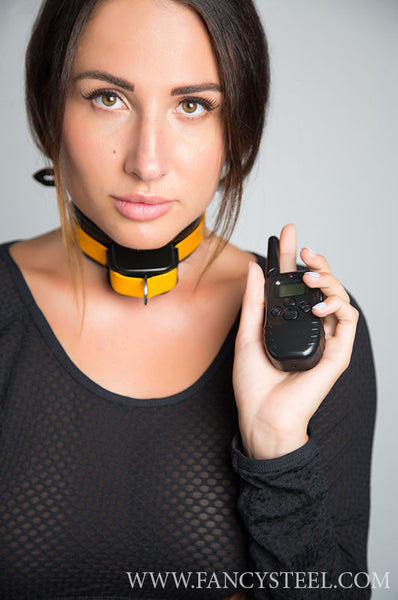 Shock collar bondage