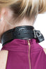 Shock Training Collar