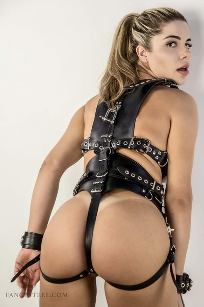 Leather Pony Harness