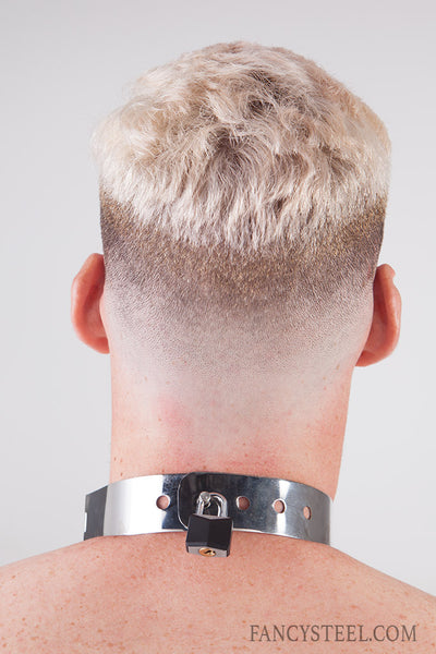 Advanced Steel shock training collar