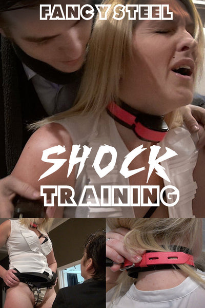 Shock collar training video