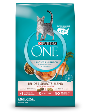 Purina ONE Dry Cat Food - Tender Selects Blend With Real Salmon