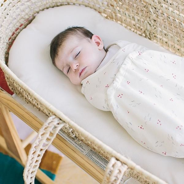 Ergobaby Swaddler - Fly Me Away (One Size)