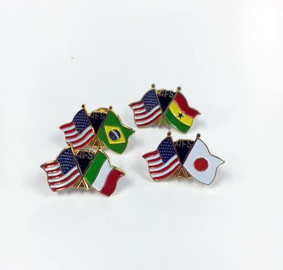 AFS-USA Flag Pin