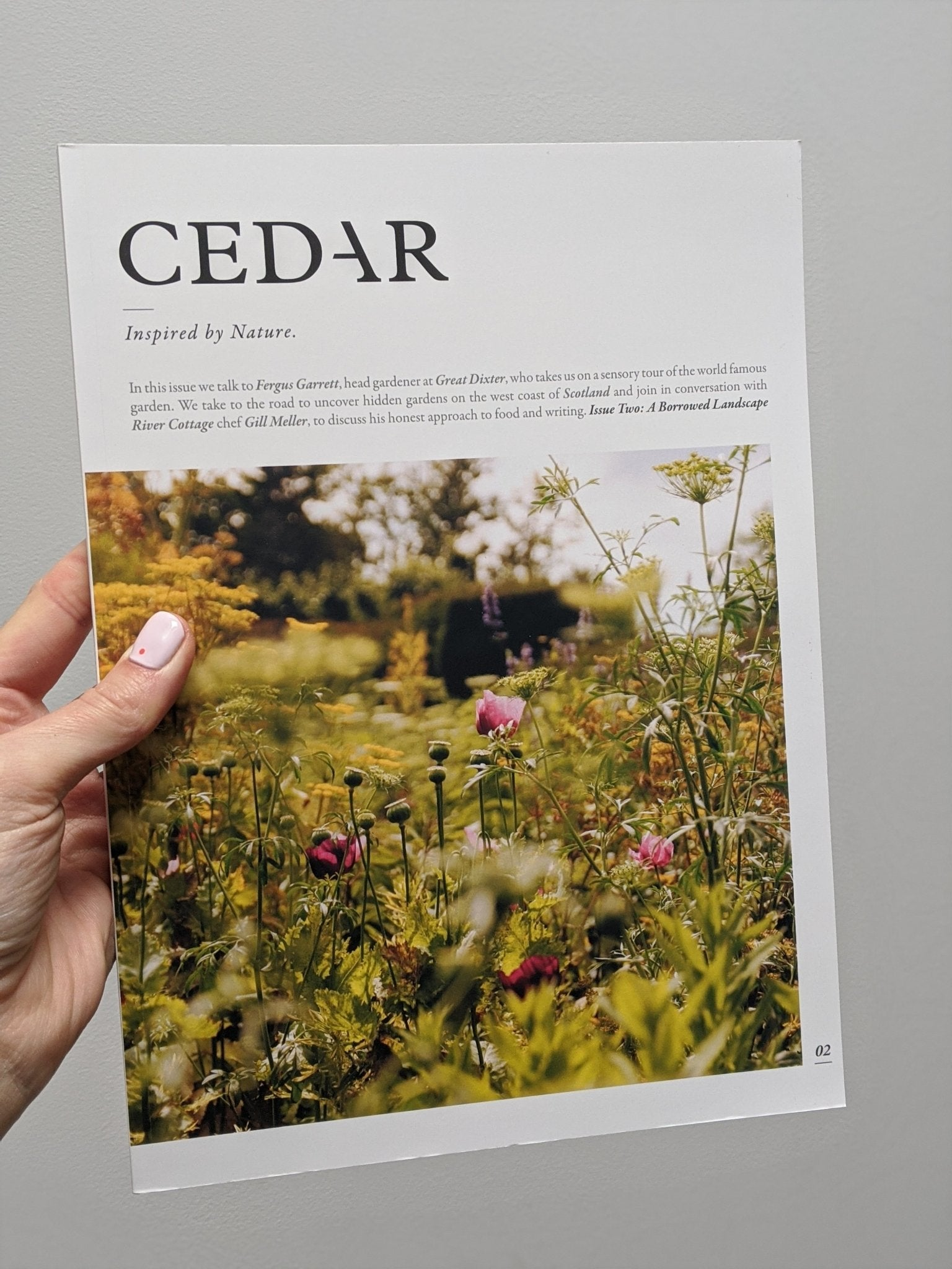 Cedar - The Stationery Cupboard