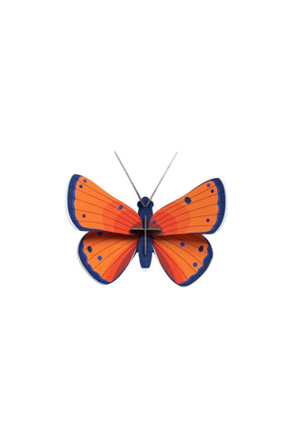 Studio Roof Insect, Wall Decor, Copper Butterfly - The Stationery Cupboard