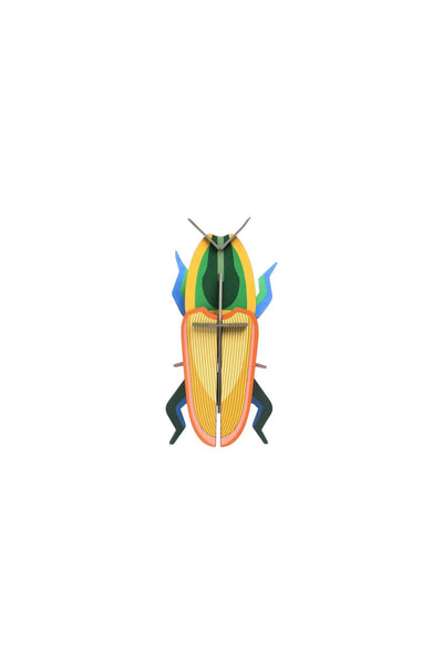 Studio Roof Insect, Wall Decor, Madagascar Beetle - The Stationery Cupboard