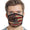 Don't Tread On Me American Flag Face Mask-Single or 3 Pack