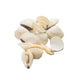 Frozen Whole Shell White Clams
