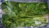 Air Flown Fresh Stick Celery 1kg - LeMed