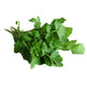 Air Flown Fresh Cress (Tere Otu) 300g