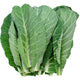 Air Flown Fresh Karalahana (Collard) 300g