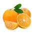 Air Flown Fresh Finike Orange 1kg