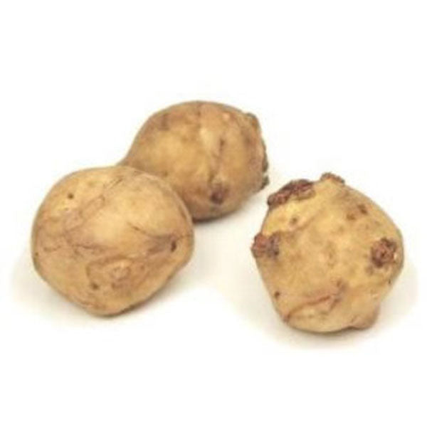 Air Flown Fresh Jerusalem Artichoke (Yer Elmasi) 500g