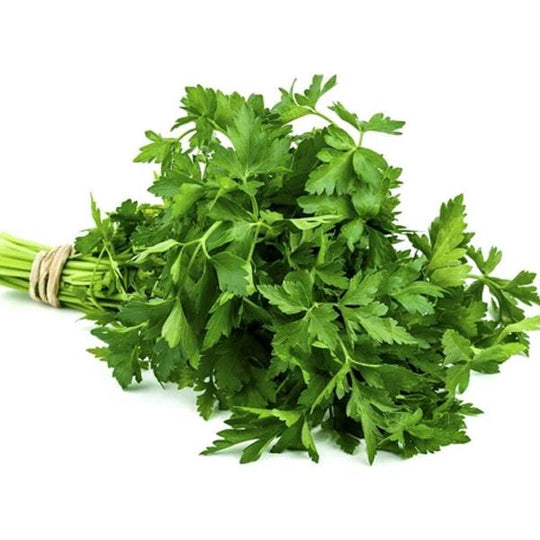 Air Flown Fresh Parsley 150g - LeMed