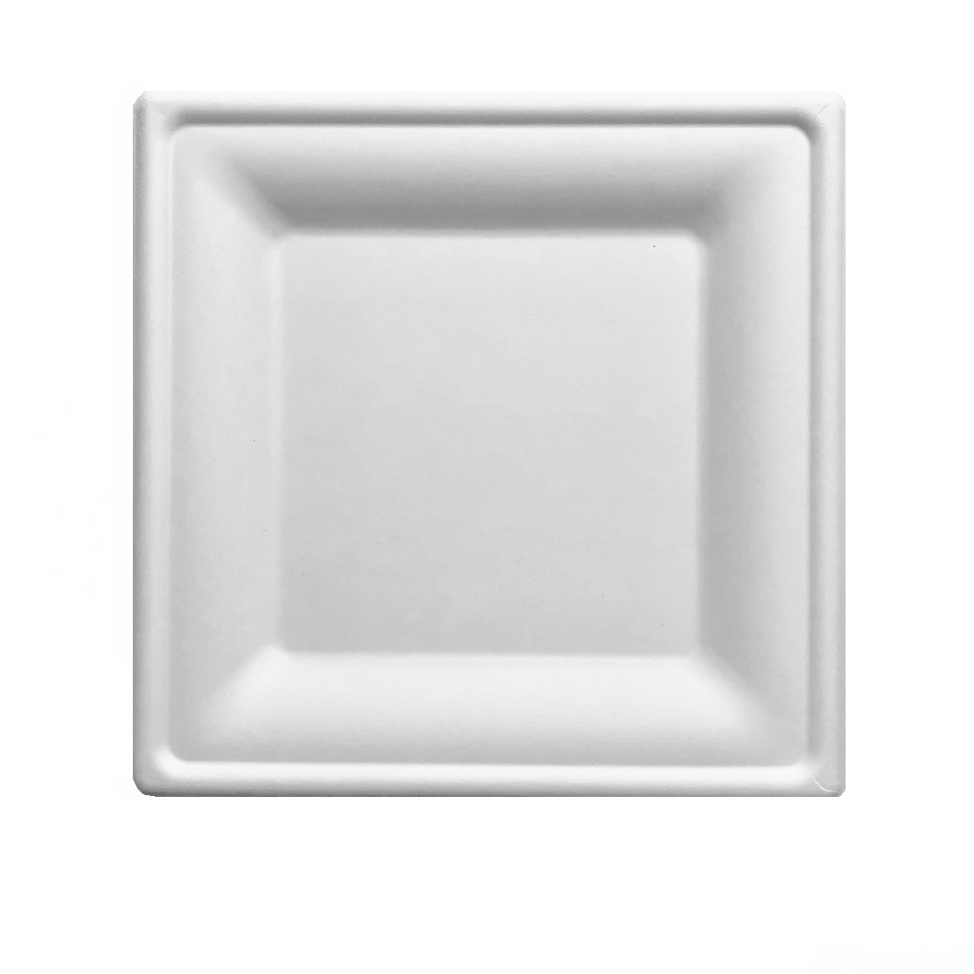 Square Biodegradable Disposable Plates [125 Pack]