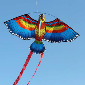 Bird of Prey Kite