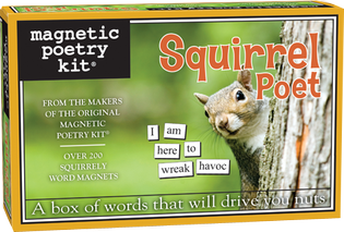 Squirrel Poet