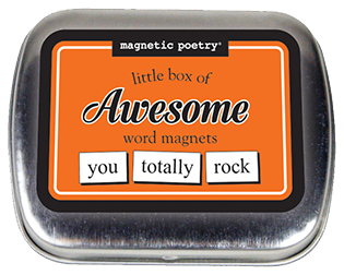 Magnetic Poetry Little Box of OBSCENITIES Word Magnets