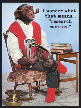 Research Monkey