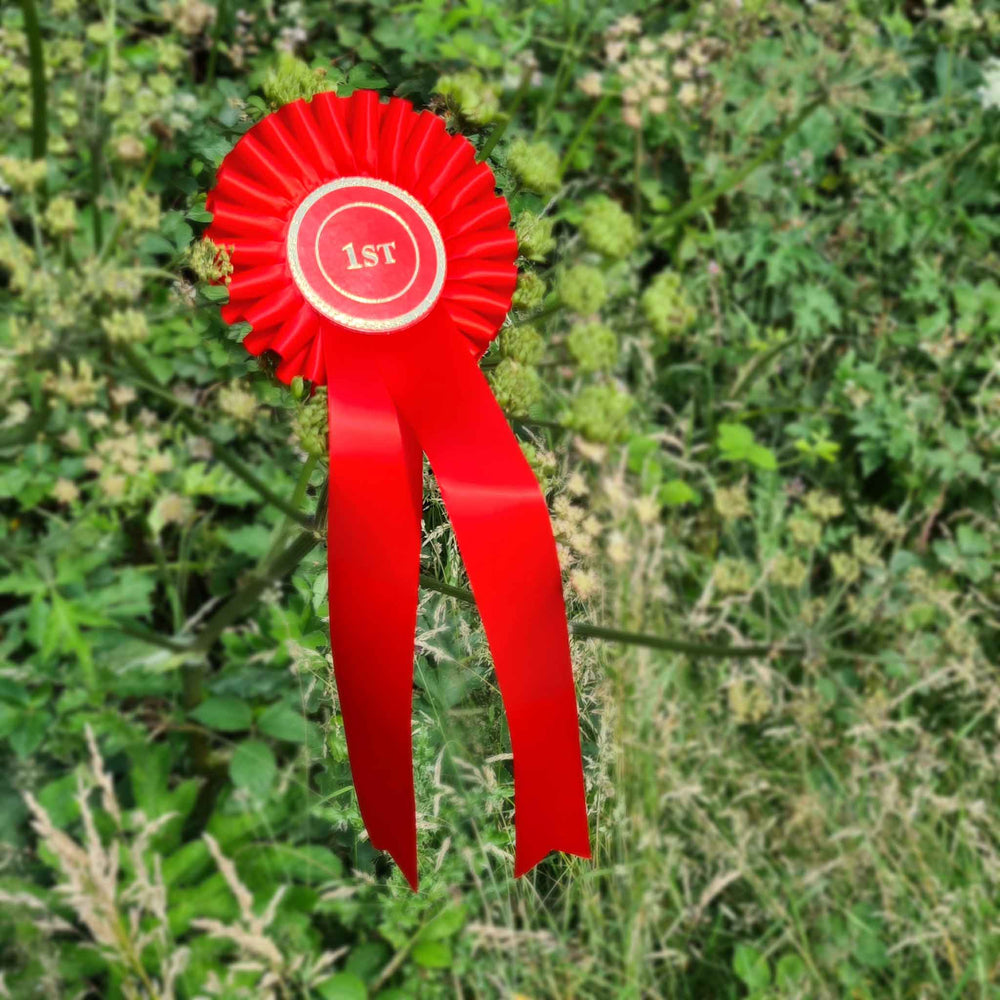 One Tier Japanese Pleat Rosette with One PRINTED Tail