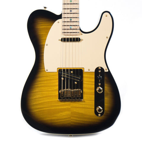 Fender Artist Series Richie Kotzen Telecaster Brown Sunburst